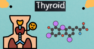 Acupressure for Thyroid